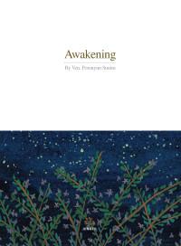 Awakening표지(정면만)